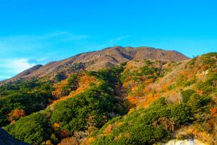 竜ヶ岳の写真素材 [FYI03421187]