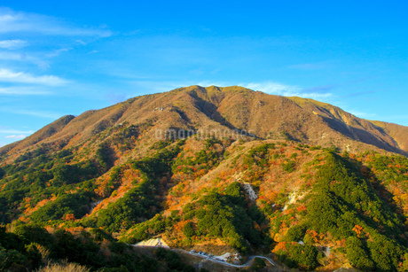 竜ヶ岳の写真素材 [FYI03421190]