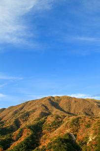 竜ヶ岳の写真素材 [FYI03421191]