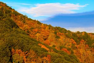 竜ヶ岳の写真素材 [FYI03421192]