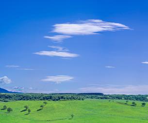 北海道 自然 風景 牧草地と青空の写真素材 [FYI03421333]