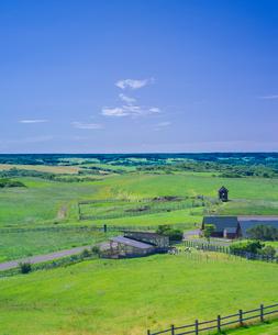 北海道 自然 風景 牧草地と青空の写真素材 [FYI03421357]