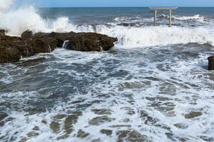 大洗海岸に砕ける荒波と神磯鳥居の写真素材 [FYI03421581]