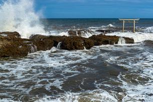 大洗海岸に砕ける荒波と神磯鳥居の写真素材 [FYI03421582]