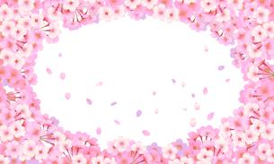桜のフレームのイラスト素材 [FYI03422127]