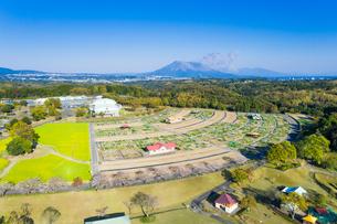 鹿児島市都市農業センターと桜島の写真素材 [FYI03422237]