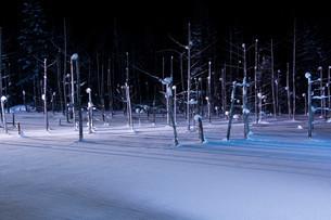 ライトアップされた冬の湖 美瑛町の写真素材 [FYI03422312]