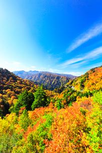 秋の白山白川郷ホワイトロードより白山を望むの写真素材 [FYI03422365]