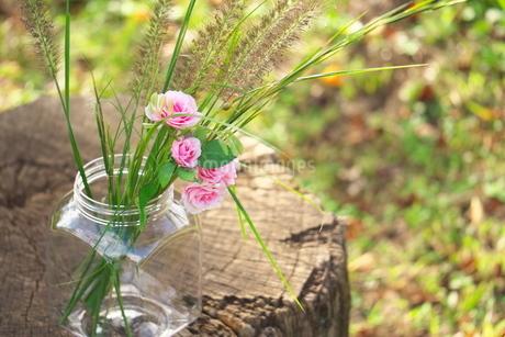 薔薇と野の草の写真素材 [FYI03422402]