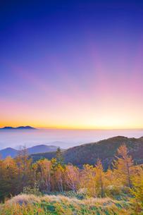 紅葉の樹林と朝の光芒と浅間山遠望の写真素材 [FYI03422566]