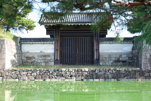 京都 二条城(離宮二条城)の南門の写真素材 [FYI03422809]