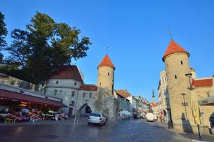 エストニアの世界遺産の歴史地区のタリンの旧市街と新市街の間に位置するヴィル門の新市街に並ぶ花屋と旧市街の旧市庁舎の尖塔と建物・旧市街は世界遺産の写真素材 [FYI03423148]