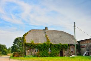 エストニア~ラトビア間車窓から見た窓枠にレンガを使った蔦が生い茂った家の写真素材 [FYI03423173]