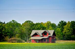 エストニア~ラトビア間車窓から見た沢山の木々に囲まれた赤い家の景観の写真素材 [FYI03423177]