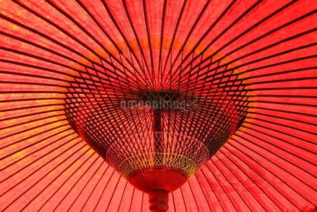 赤い番傘の写真素材 [FYI03423268]