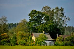 エストニア~ラトビア間車窓から見た沢山の木々に囲まれた家の写真素材 [FYI03423389]