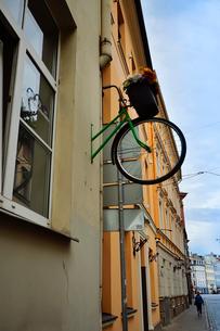ラトビア・首都リガ世界遺産の石畳の道に並ぶ建物と自転車のオブジェの写真素材 [FYI03423406]
