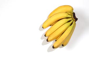 一房のバナナの写真素材 [FYI03423424]