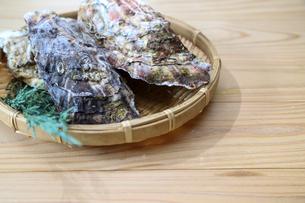 牡蠣の写真素材 [FYI03423427]