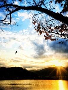 夕陽の写真素材 [FYI03423539]