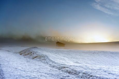 雪原 冬 融雪剤 畑 春 夕方 夕景 北海道 士別市 川西町の写真素材 [FYI03423547]