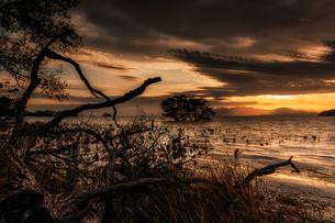 琵琶湖 日本 滋賀県 長浜市の写真素材 [FYI03423562]