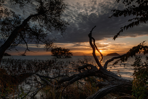 琵琶湖 日本 滋賀県 長浜市の写真素材 [FYI03423567]