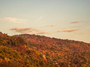 香川県の小豆島の秋の寒霞渓の写真素材 [FYI03423581]