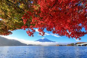 紅葉と富士山 富士河口湖町の写真素材 [FYI03423714]
