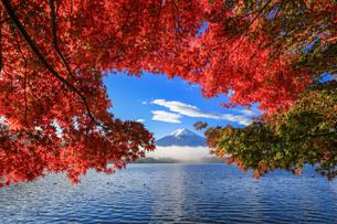 紅葉と富士山 河口湖 富士河口湖町の写真素材 [FYI03423715]