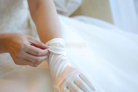 グローブをはめる花嫁の手のアップの写真素材 [FYI03424027]