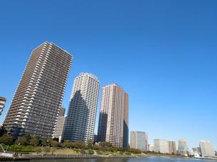 東京の臨海エリアに並ぶタワーマンションの写真素材 [FYI03424298]