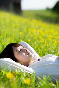 草原で寝転ぶ若い女性の写真素材 [FYI03424439]