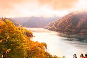 秋の九頭竜湖 紅葉に霧と夢の架け橋を望むの写真素材 [FYI03424561]