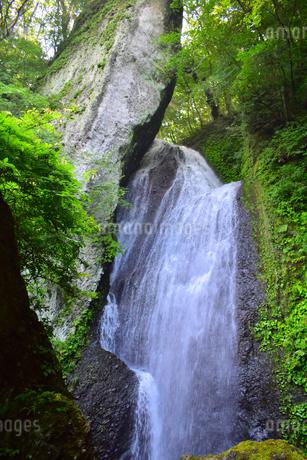 仙の滝の写真素材 [FYI03424782]