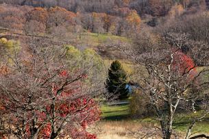 アメリカ、バージニア州の風景の写真素材 [FYI03424865]