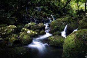 元滝伏流水 日本 秋田県 にかほ市の写真素材 [FYI03424869]