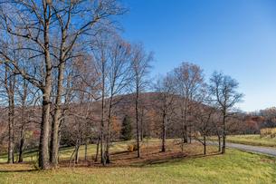 アメリカ、ヴァージニアの風景の写真素材 [FYI03424955]
