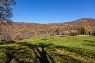 アメリカ、ヴァージニアの風景の写真素材 [FYI03424968]