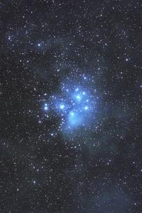 プレアデス星団の写真素材 [FYI03425163]