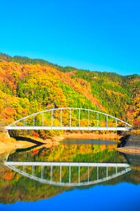 秋の九頭竜湖と紅葉の山に快晴の空の写真素材 [FYI03426421]