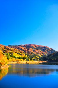 秋の九頭竜湖と紅葉に快晴の空の写真素材 [FYI03426424]