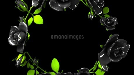 Black roses frame on black text spaceのイラスト素材 [FYI03426779]