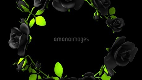 Black roses frame on black text spaceのイラスト素材 [FYI03426781]