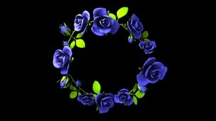 Blue roses frame on black text spaceのイラスト素材 [FYI03426788]