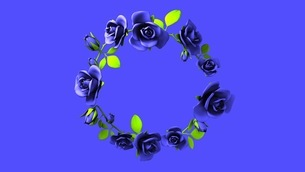 Blue roses frame on black text spaceのイラスト素材 [FYI03426792]
