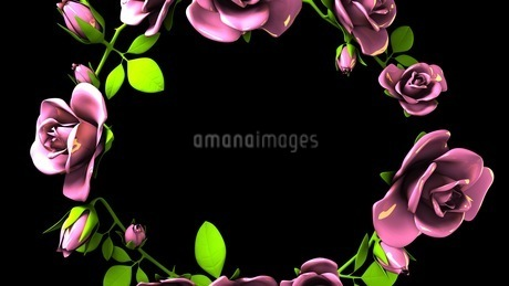 Pink Roses Frame On Black Text Spaceのイラスト素材 [FYI03426799]