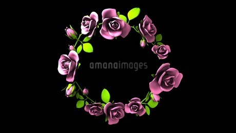 Pink Roses Frame On Black Text Spaceのイラスト素材 [FYI03426800]