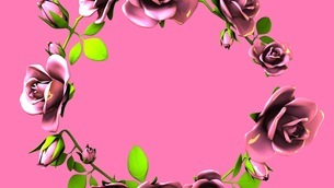 Pink Roses Frame On Pink Text Spaceのイラスト素材 [FYI03426803]