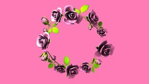 Pink Roses Frame On Pink Text Spaceのイラスト素材 [FYI03426804]
